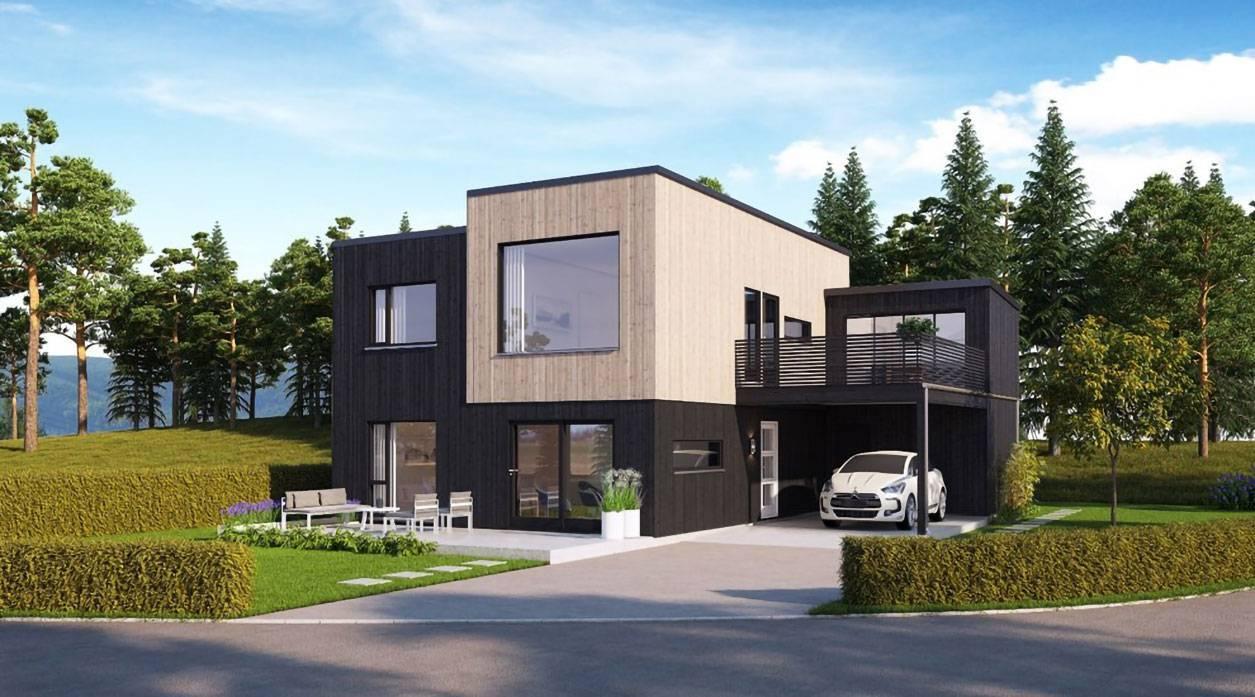 Hustype-Øydna-kataloghus-kiting-sort-og-upigmentert