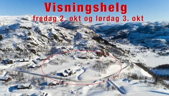visningshelg-Ljosland
